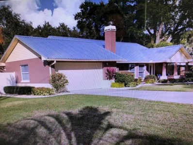 13214 E Wheeler Road, Dover, FL 33527 - MLS#: T3131125
