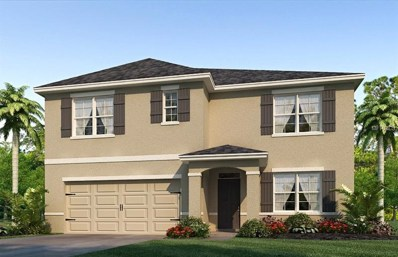 9823 Warm Stone Street, Thonotosassa, FL 33592 - MLS#: T3131275