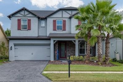 4488 Vermillion Sky Drive, Wesley Chapel, FL 33544 - MLS#: T3131287
