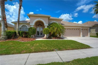10015 Oxford Chapel Drive, Tampa, FL 33647 - MLS#: T3131421