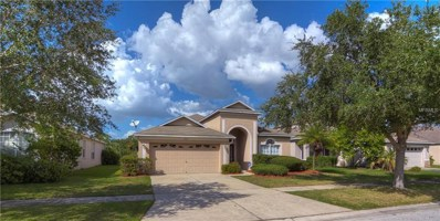 8802 Sandy Plains Drive, Riverview, FL 33578 - MLS#: T3131456