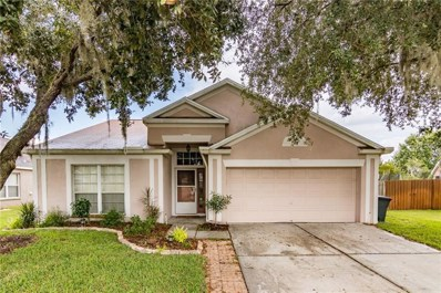 29720 Bright Ray Place, Wesley Chapel, FL 33543 - MLS#: T3131475