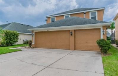 20117 Nob Oak Avenue, Tampa, FL 33647 - MLS#: T3131477