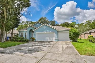 3713 Hollow Wood Drive, Valrico, FL 33596 - MLS#: T3131487