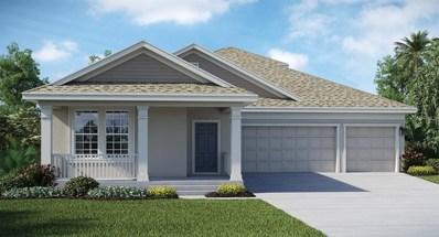1719 Snapper Street, Saint Cloud, FL 34771 - MLS#: T3131518