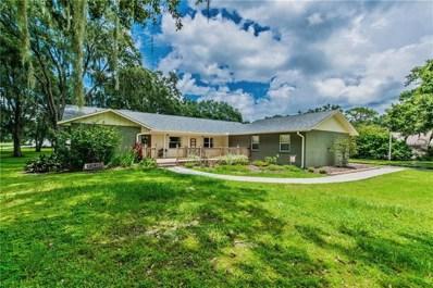 506 Cloverleaf Drive, Lithia, FL 33547 - MLS#: T3131524