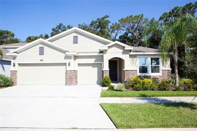 10311 Riverdale Rise Drive, Riverview, FL 33578 - MLS#: T3131580
