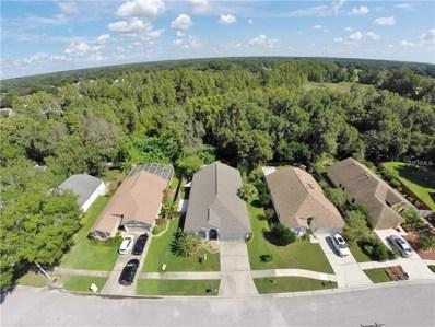 28923 Bay Tree Place, Wesley Chapel, FL 33545 - MLS#: T3131615