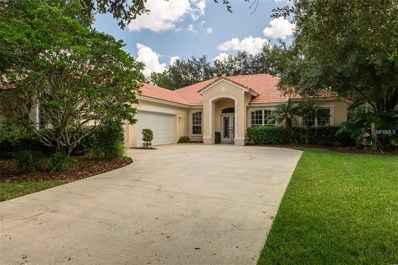 18111 Courtney Breeze Drive, Tampa, FL 33647 - #: T3131757