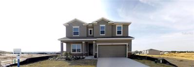13325 Magnolia Valley Drive, Clermont, FL 34711 - #: T3131800