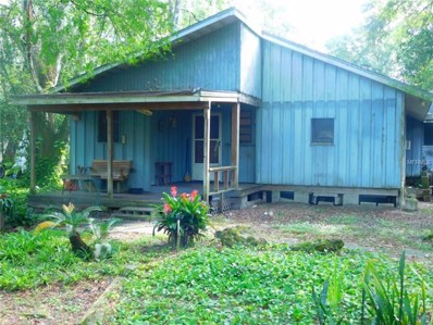 6846 Mangrove Drive, Zephyrhills, FL 33544 - MLS#: T3131827