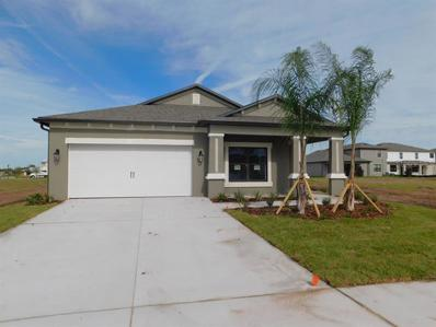 11414 Amapola Bloom Court, Riverview, FL 33579 - MLS#: T3131870