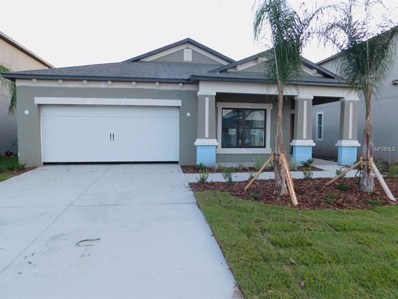 11425 Amapola Bloom Court, Riverview, FL 33579 - MLS#: T3131873