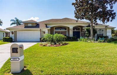 3051 Sutton Woods Drive, Plant City, FL 33566 - MLS#: T3131954