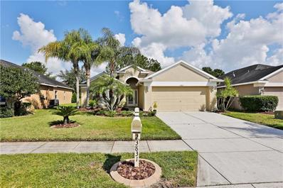 23831 Plantation Palms Boulevard, Land O Lakes, FL 34639 - MLS#: T3132133