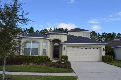 10806 Navigation Drive, Riverview, FL 33579 - MLS#: T3132394