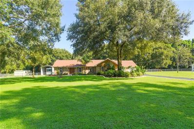 705 Orange Blossom Lane, Seffner, FL 33584 - MLS#: T3132553
