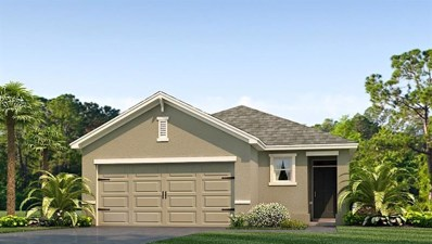 10224 Mangrove Well Road, Sun City Center, FL 33573 - MLS#: T3132569