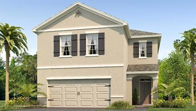 10232 Mangrove Well Road, Sun City Center, FL 33573 - MLS#: T3132579
