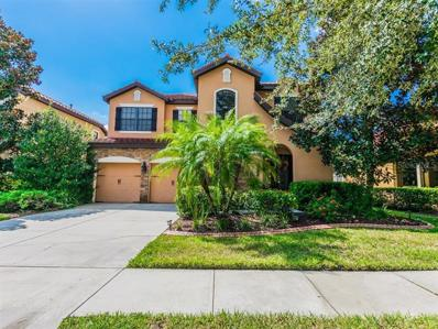 20208 Heritage Point Drive, Tampa, FL 33647 - MLS#: T3132675
