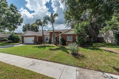 3006 Folklore Drive, Valrico, FL 33596 - MLS#: T3132779