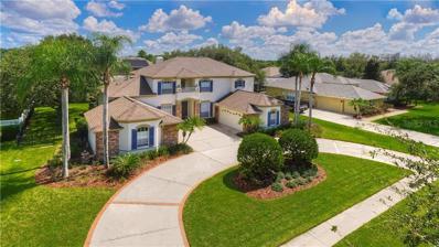19111 Beckett Drive, Odessa, FL 33556 - MLS#: T3133020
