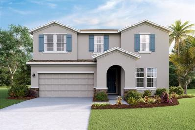 6553 Devesta Loop, Palmetto, FL 34221 - MLS#: T3133039