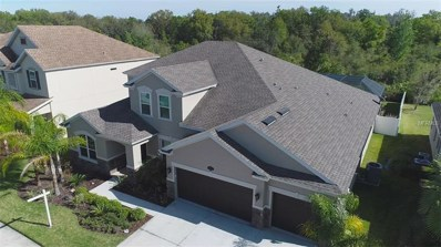 10513 Mistflower Lane, Tampa, FL 33647 - MLS#: T3133112