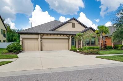 10904 Charmwood Drive, Riverview, FL 33569 - MLS#: T3133269