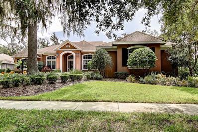 16313 Dunlindale Drive, Lithia, FL 33547 - MLS#: T3133270