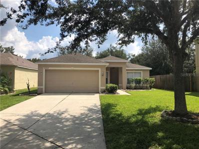 18307 Elmhurst Lane, Tampa, FL 33647 - #: T3133294