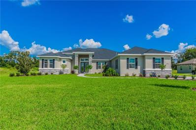 10914 Brice Tree Court, Lithia, FL 33547 - MLS#: T3133298