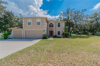 6272 Alderwood Street, Spring Hill, FL 34606 - MLS#: T3133376