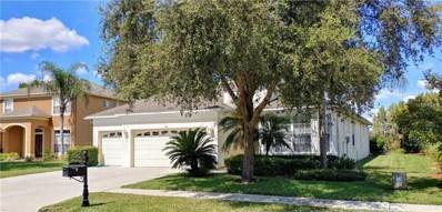 3319 Chessington Drive, Land O Lakes, FL 34638 - MLS#: T3133775