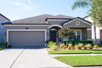 11609 Palmetto Pine Street, Riverview, FL 33569 - MLS#: T3133793