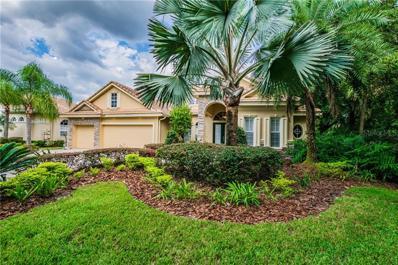 17201 Talence Court, Tampa, FL 33647 - MLS#: T3133802