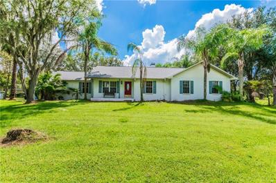 13523 Thonotosassa Road, Dover, FL 33527 - MLS#: T3133890