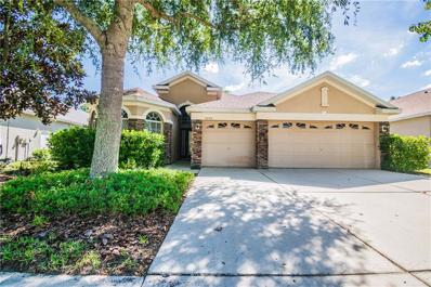 9240 Edistro Place, New Port Richey, FL 34654 - MLS#: T3134145
