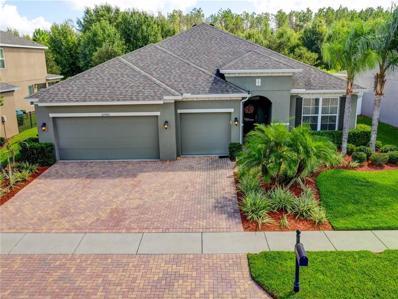 22460 Cherokee Rose Place, Land O Lakes, FL 34639 - MLS#: T3134370