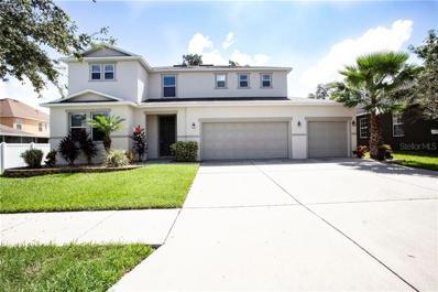 11135 Hartford Fern Drive, Riverview, FL 33569 - MLS#: T3134397