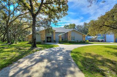 7382 Lagoon Road, Spring Hill, FL 34606 - MLS#: T3134419