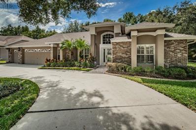 16212 Breckinmore Lane, Tampa, FL 33625 - MLS#: T3134580
