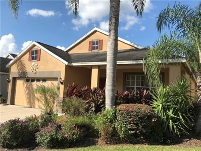 11016 Newbridge Drive, Riverview, FL 33579 - MLS#: T3134669