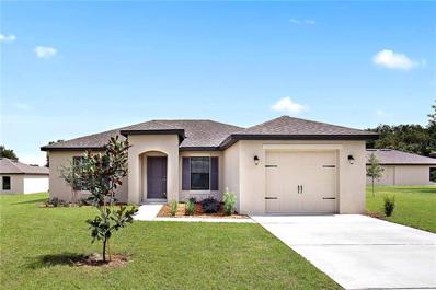 26412 Mc Allister Street, Brooksville, FL 34602 - MLS#: T3134838