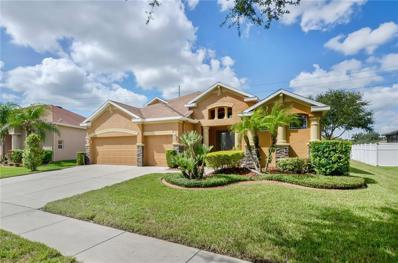 1110 Facet View Way, Valrico, FL 33594 - MLS#: T3134951