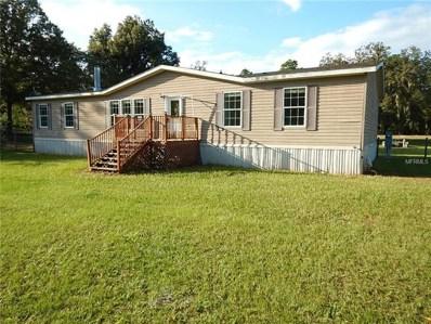 17725 Bosley Drive, Spring Hill, FL 34610 - #: T3134991