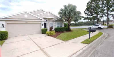 5246 Lookout Pass, Wesley Chapel, FL 33544 - MLS#: T3135022