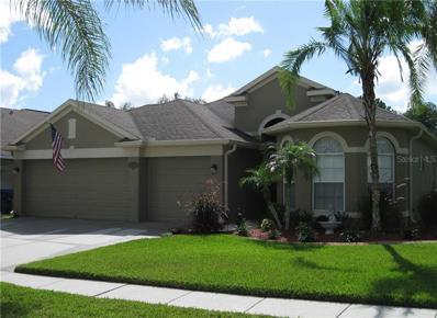 23816 Plantation Palms Boulevard, Land O Lakes, FL 34639 - MLS#: T3135107