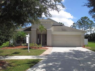 13209 Evening Sunset Lane, Riverview, FL 33579 - MLS#: T3135247