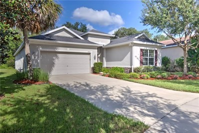 17437 New Cross Circle, Lithia, FL 33547 - MLS#: T3135350